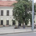 Pylimo / Trakų g. skveras